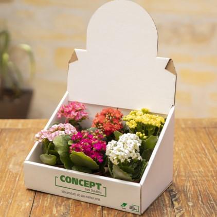 Embalajes para floristerías